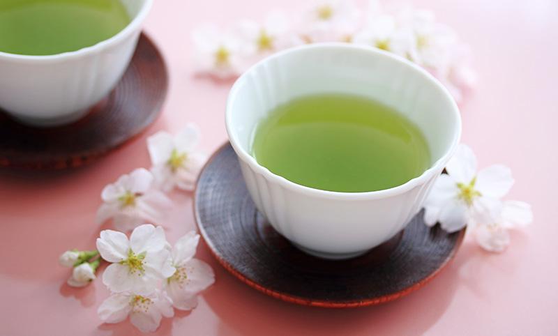 What Is Sakura Sencha? | Sugimoto Tea Company