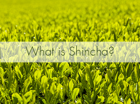 blog thumbnail - what is shincha